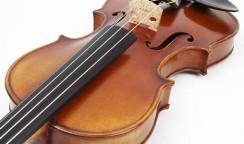 鈴木バイオリンについて。